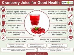 Amazing Health Benefits Of Cranberry Juice