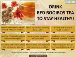 13 Amazing Health Benefits Of Red Rooibos Tea