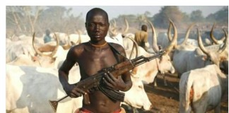 Fulani Herdsmen: The Niger State's scenario and the Army