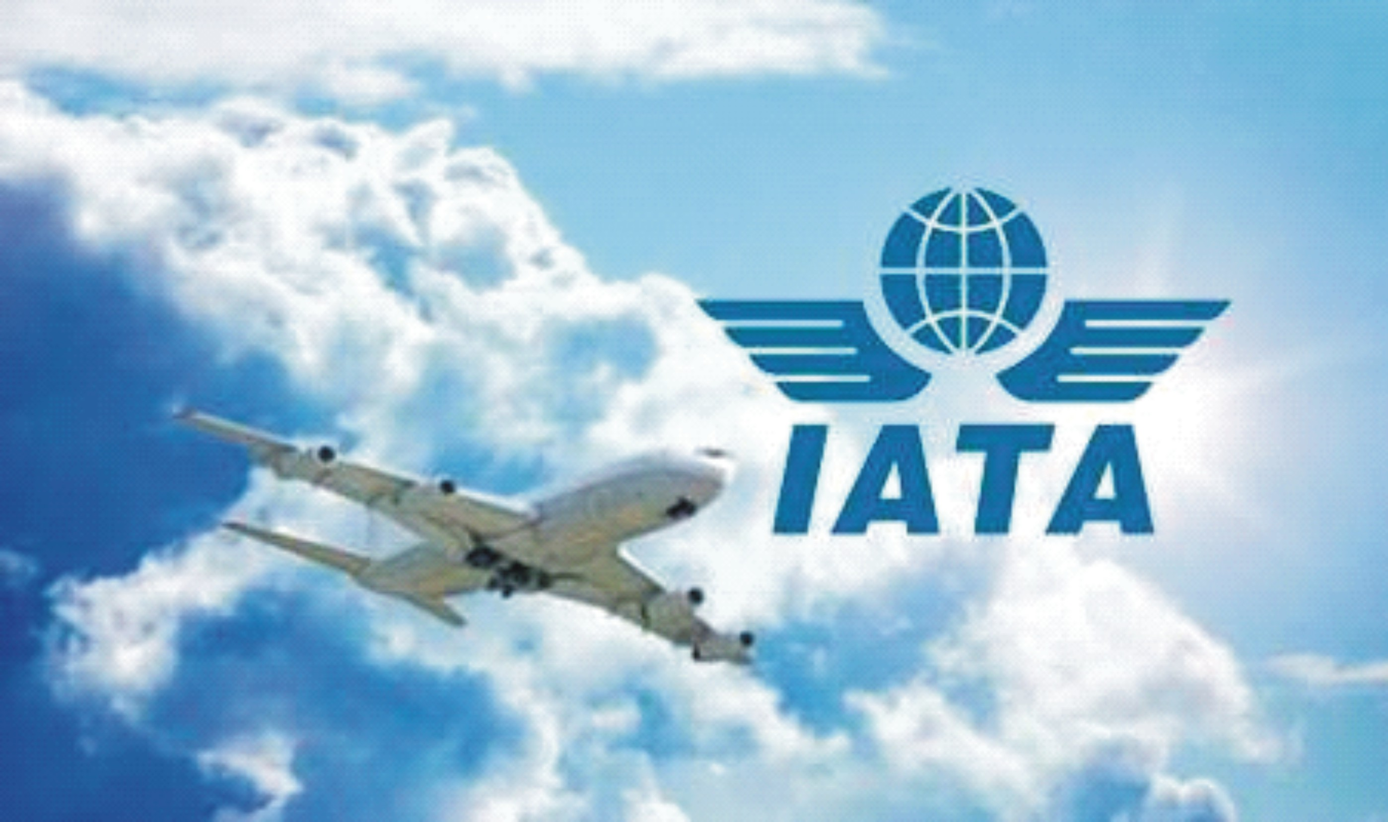 International Air Travel Association