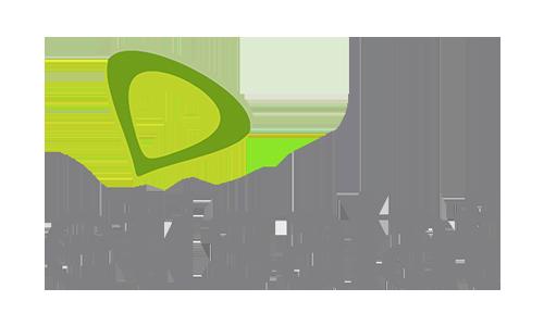 Etisalat loan talks reach deadlock | National Daily Newspaper