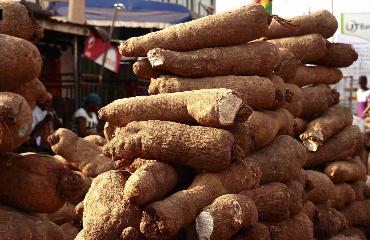 Nigeria Yam Export Hits Snag In UK