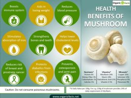 11 Interesting Mushroom Benefits