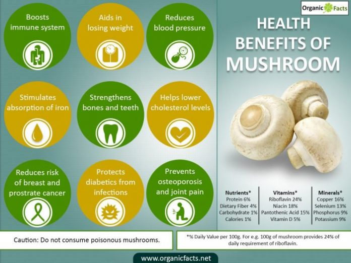 11 Interesting Mushroom Benefits