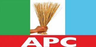 Ogun Rep member defects to APC