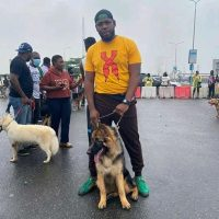 #ENDSARS protesters resume at Lekki Tollgate venue with defence dogs | Daily's Flash IMG 20201017 WA0040 200x200  #ENDSARS protesters resume at Lekki Tollgate venue with defence dogs | Daily's Flash IMG 20201017 WA0040 200x200